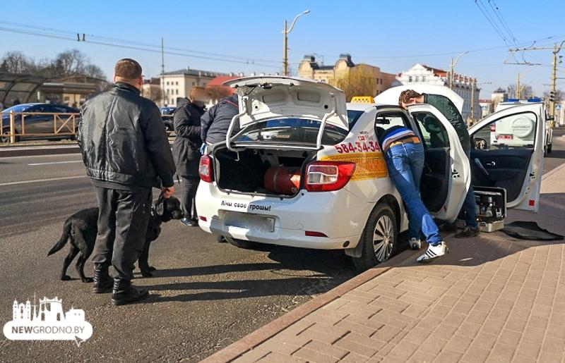 taksi-zerno-03.jpg