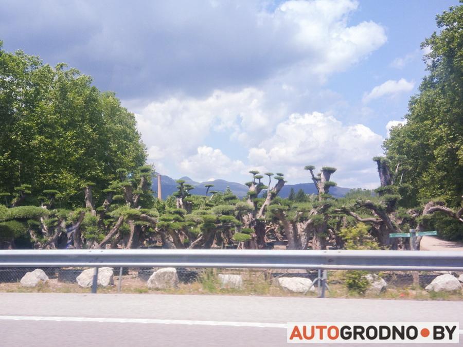Поездка из Гродно в Испанию