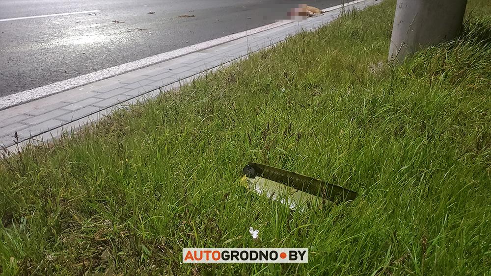 ДТП на новой объездной возле Восточного моста мото сбил косулю авария