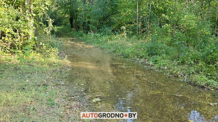Знаменитый веломаршрут Шляхам Тызангаўза под Гродно затопило